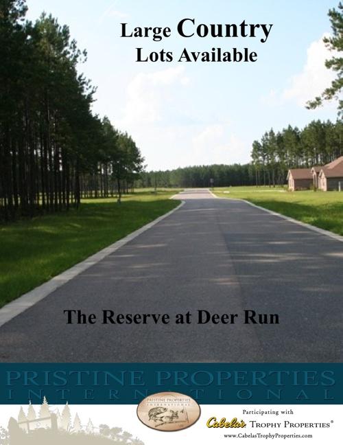 The Reserve at Deer Run