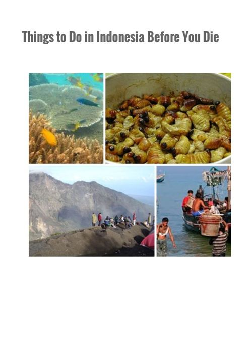 Things to Do in Indonesia Before You Die