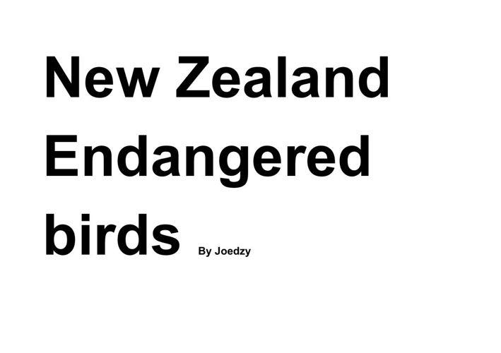 New Zealand Endangered birds