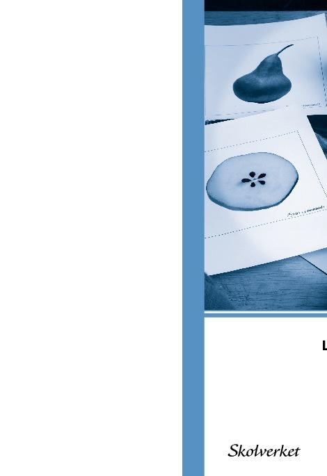 Läroplan för grundskolan, LGR11