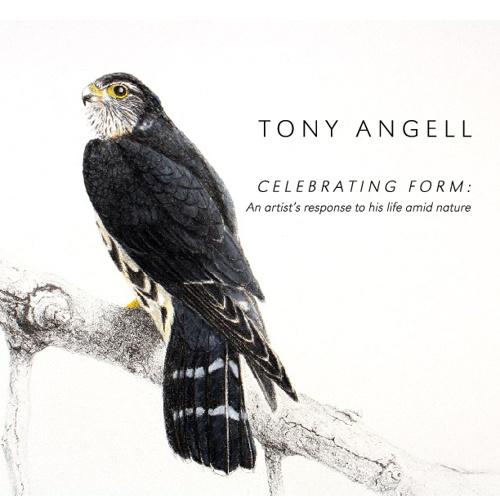 Tony Angell October 2012 Catalog