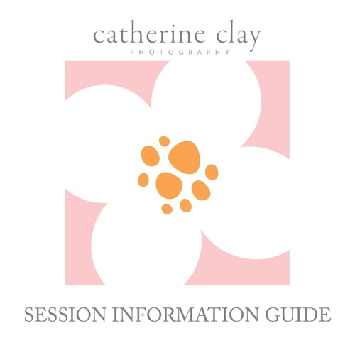 Session Info-Online