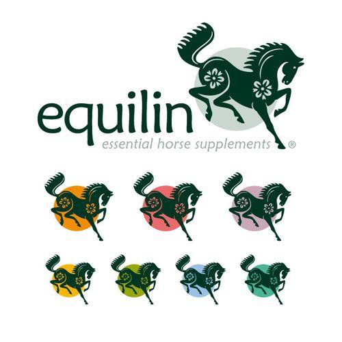 150707_Equilin_Brochure_FR