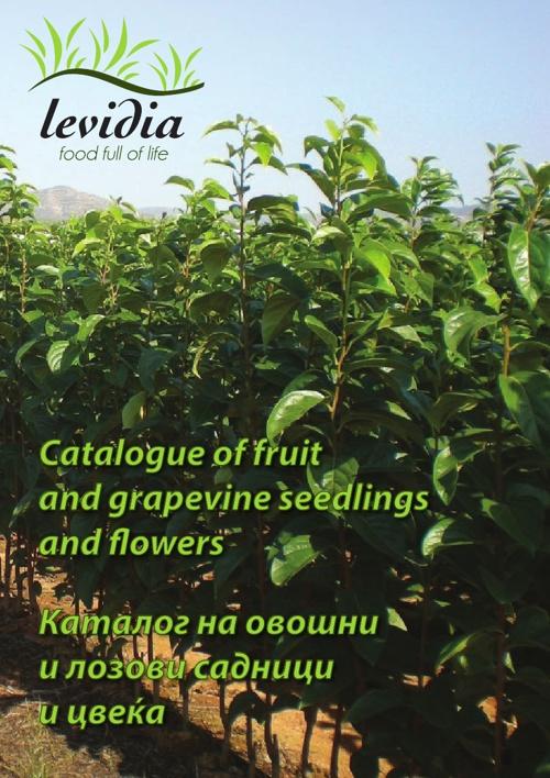 Catalogue Levidia