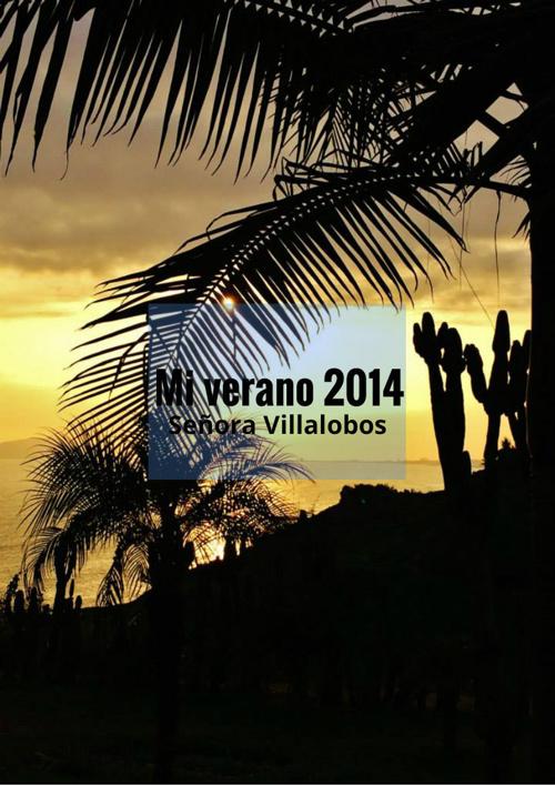 Español 3: Mi verano por Señora Villalobos