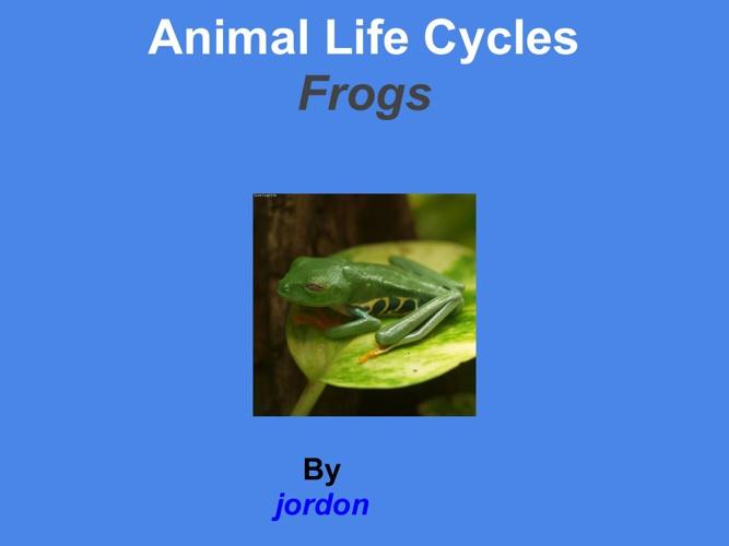 Jordon Frog