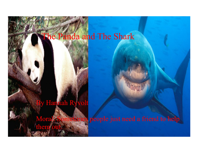 The Panda and The Shark