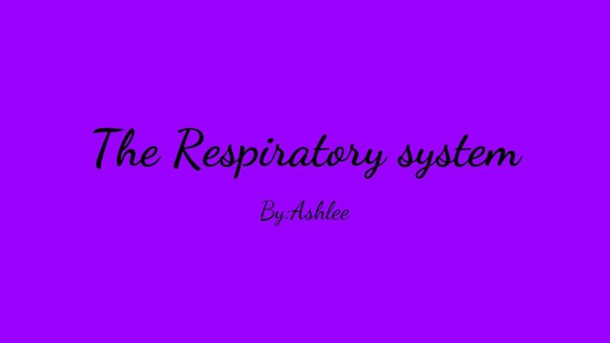 The Restporitory system  (1)