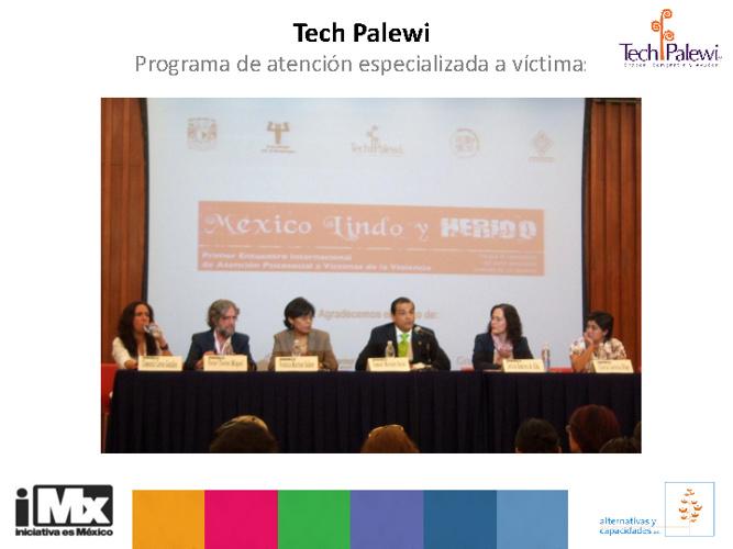 40_ iMx Tech Palewi