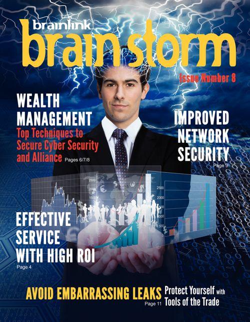 Brainlink Brainstorm Feb/March 2017