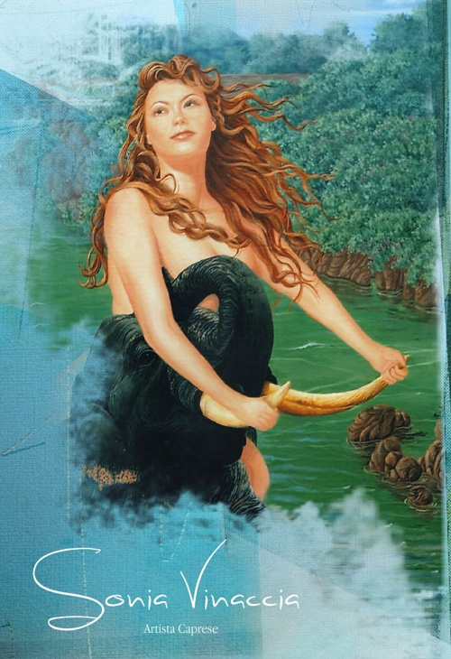 Sonia Vinaccia catalog 2013