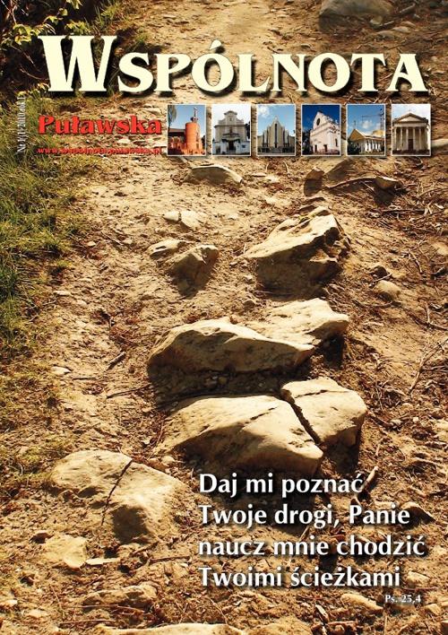 Wspólnota Puławska Nr 1(1) 2010 rok I
