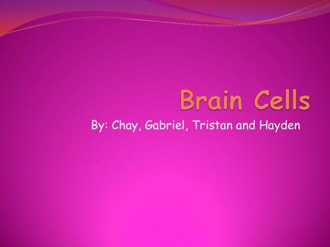 Brain Cells