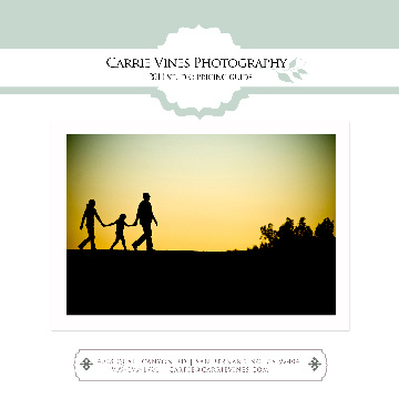 Carrie Vines Photography Investment 2011