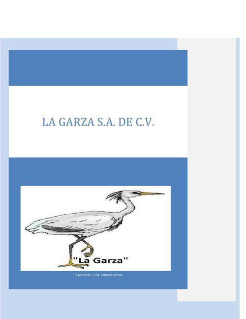 La Garza S.A de C.V1
