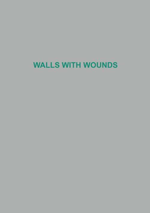 Copy of walls cover