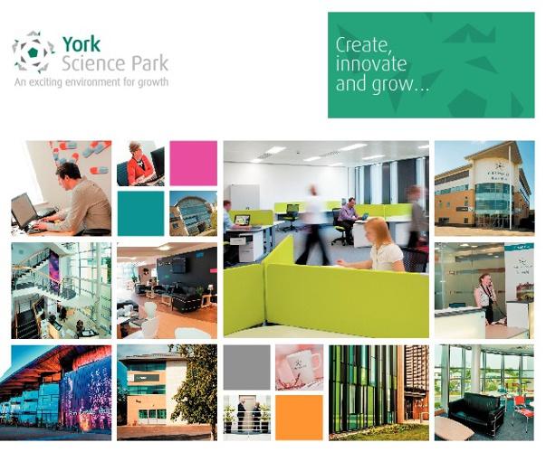 YSP Corporate Brochure