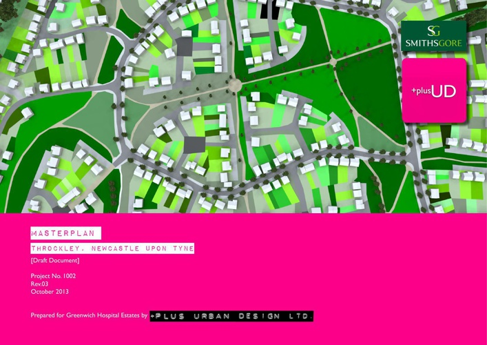 Throckley Masterplan 2013