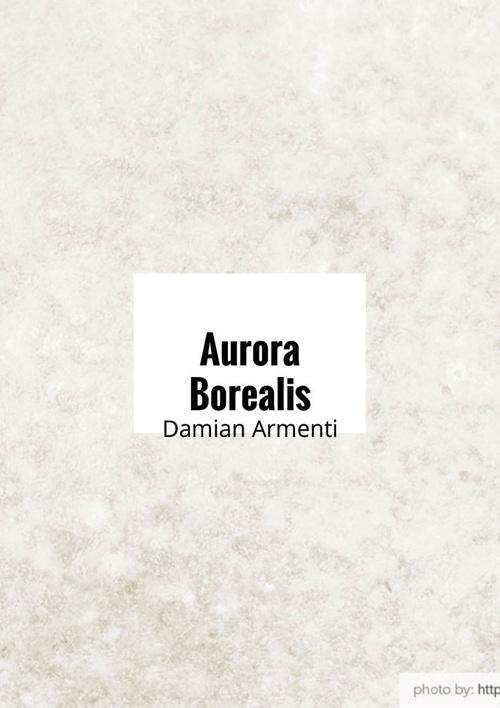 Aurora Borealis By Damian Armenti