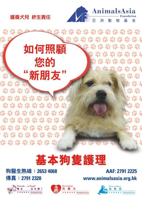DogCare(chi)