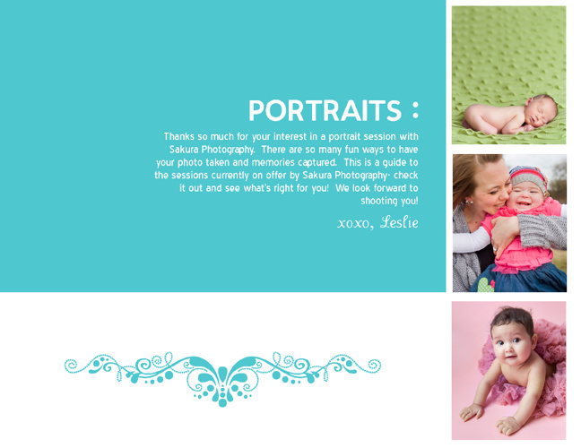 Sakura Photography Portrait Information
