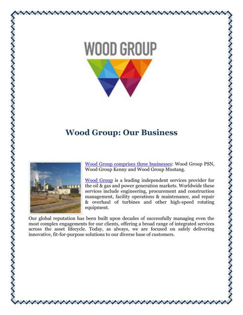 Wood Group: Our Business