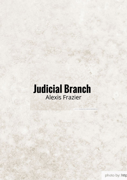 Judicial Branch Definitions