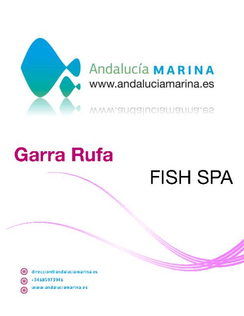 Catálogo Garra Rufa