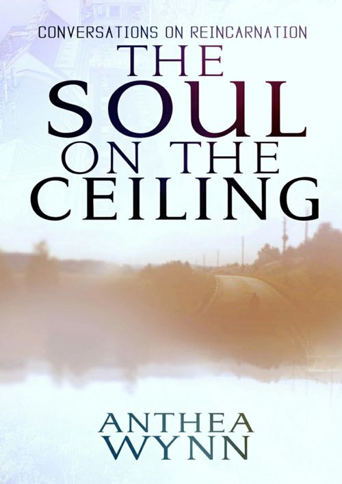 The Soul on the Ceiling, conversations on reincarnation