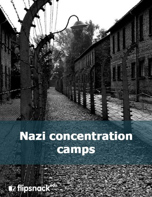 Copy of 1. cover nazi