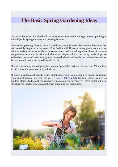 The Basic Spring Gardening Ideas