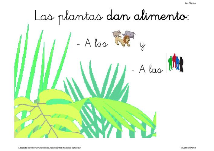 Plantas Adaptado