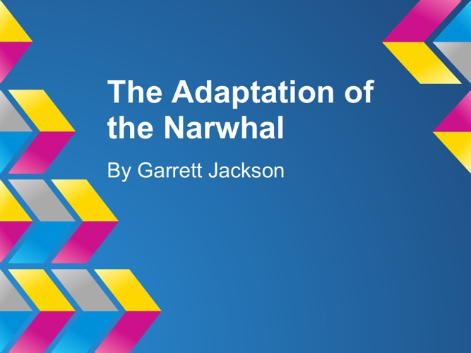 The Narwhals Adaptation
