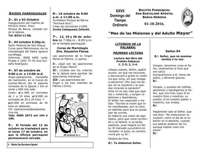 Boletín 686, XXVII Domingo del Tiempo Ordinario