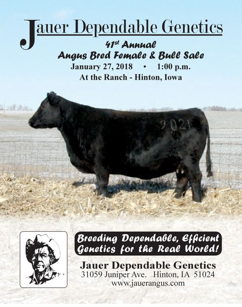 Jauer Dependable Genetics Sale