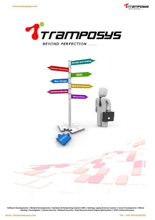 Tramposys Company  Profile