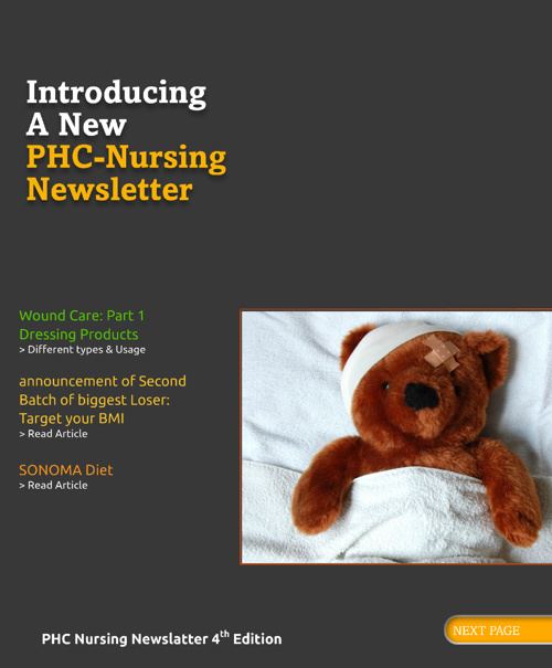 PHC nursing newsletter issue 4