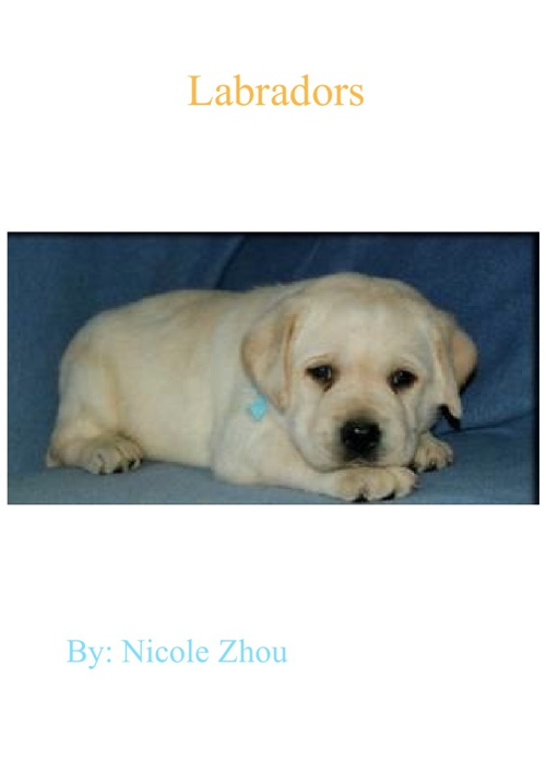 Labradors By: Nicole