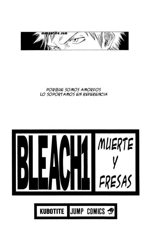BLEACH MUERTE Y FRESAS 1