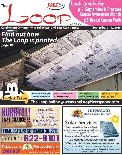 The Loop Newspaper Vol 31 No 04 - September 3 to 17, 2016