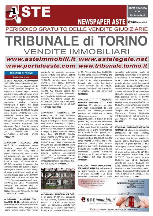Torino febbraio 2015