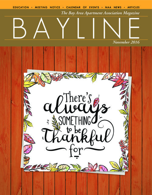 Bayline November 2016