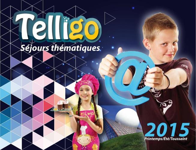 Telligo_New_Charte_2015_Them