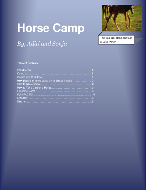 Sonja & Aditi - Horse Camp