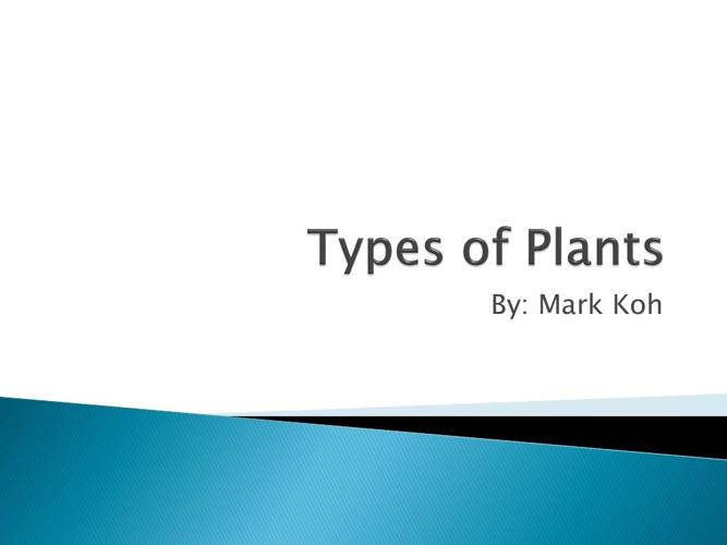 Types of Plants