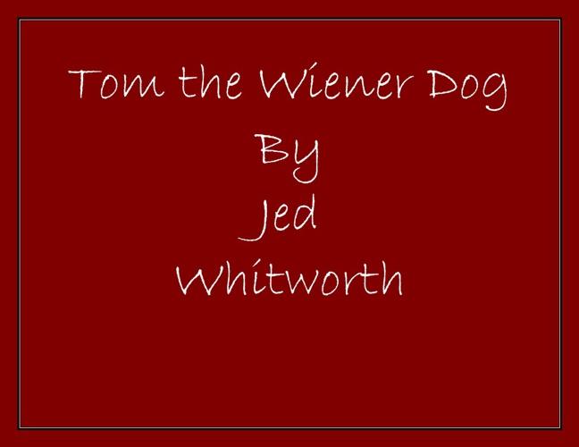 Tom The Wiener Dog