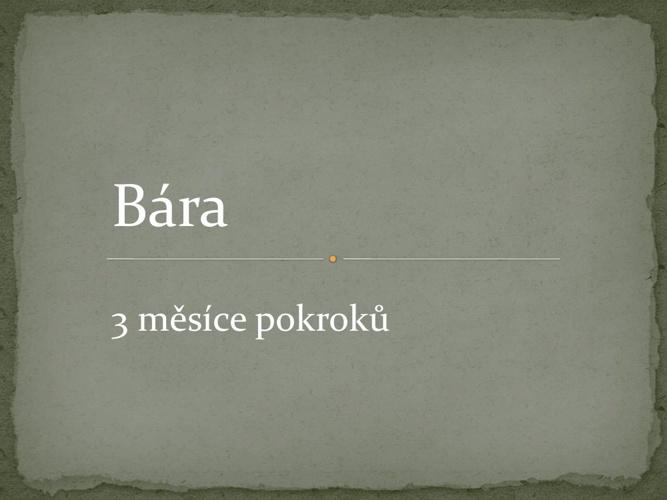 Bára III