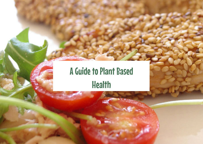 Guide Plant Based Lifestyle