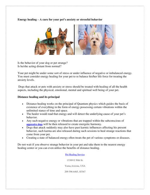 Energy_healing_–_A_cure_for_your_pet's_anxiety_or_stressful_beha