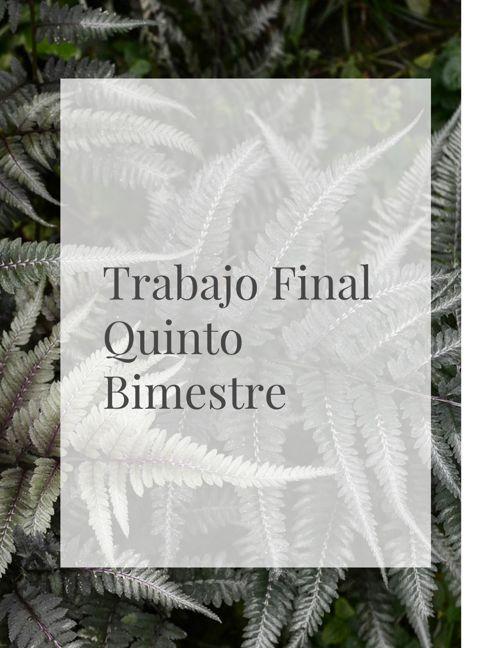 Proyecto Final Quinto Bimestre